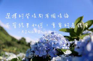 陽明山繡球花季 高家繡球花